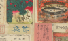 thumbnail of Tanaka Yoshio, Natural History Collection